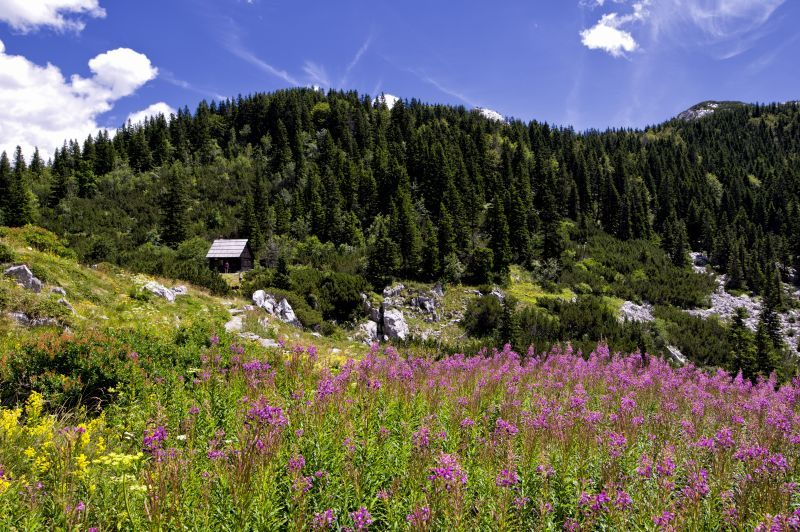 https://www.turizmoteka.hr/image/18624/original/